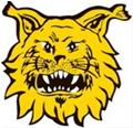 Ilves Tampere (w)