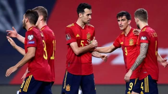 Mèo tiên tri dự đoán Slovakia vs Tây Ban Nha, 23h ngày 23/6